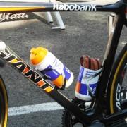 Tour de France 2012 – Foto's rustdag Pau