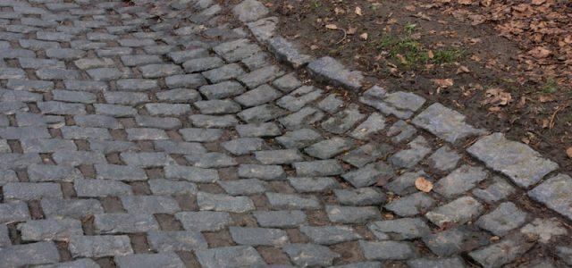 LIVE Parijs-Roubaix 2019
